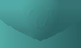 Endeavour Safety Services Logo